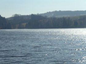 Bilder 2011 (2/59)