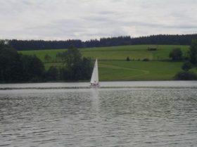 Bilder 2011 (39/59)